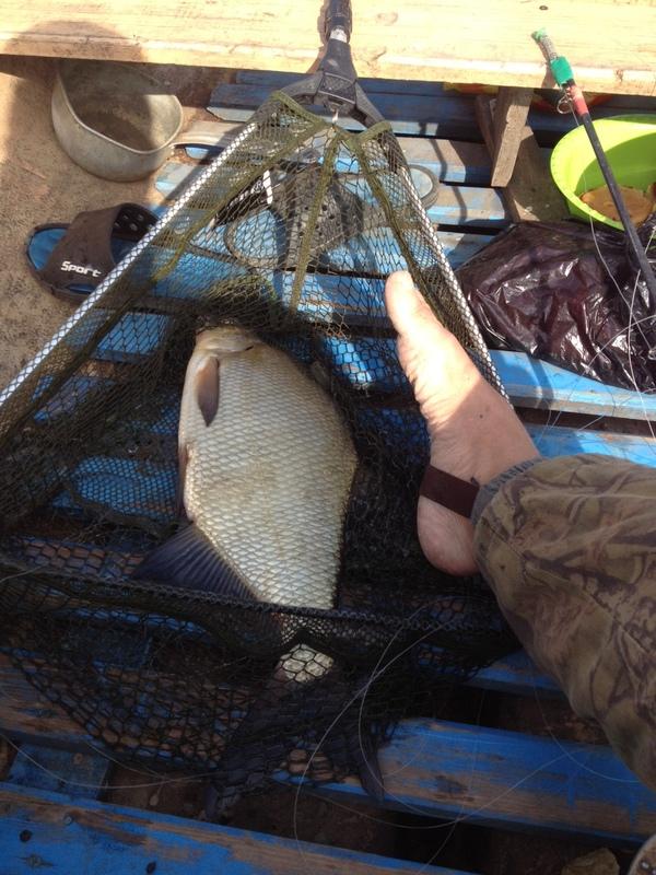 Лига рыбаков!!! Рыбалка, Вуокса, Волга, Длиннопост