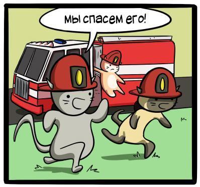 Котоспасатели. Кот, Спасение животных, Дерево