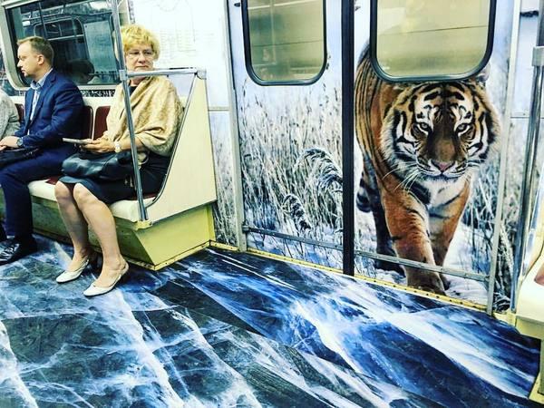 Атмосферный поезд с амурскими тиграми на салатовой ветке московского метро. Метро, Тигр, Графика
