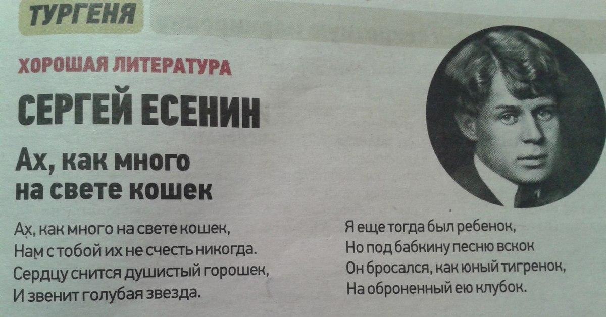 Есенин проститутка тюмень проститутку