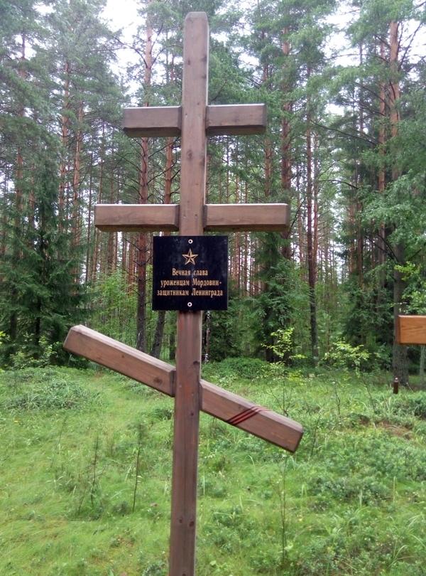 В память о ВОВ. В Ленинградской области. Герои вов, Вечная память, Длиннопост