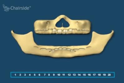 Рост зубов