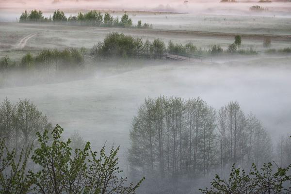 За городом густой туман. 5:29 утра Вид из окна, Туман, Фото, Пейзаж