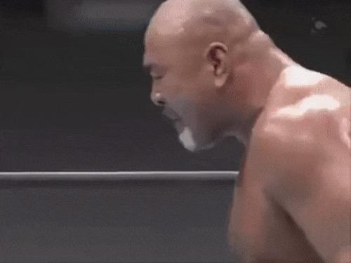 Японский рестлинг NJPW, Рестлинг, Япония, Keiji Mutoh, Shinsuke Nakamura, Гифка