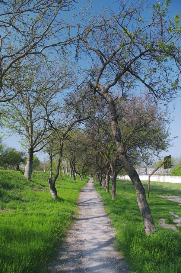 Бахчисарай фото весна