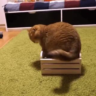 Размер не важен