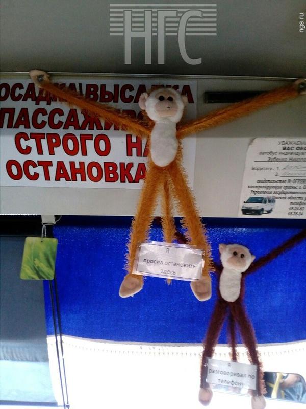 Омские маршрутки Омск, Новости, Маршрутка, Игрушки, Распятие, Казнь, Россия