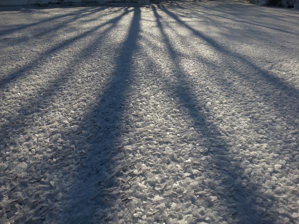 Ангелы опали. Лёд, Крылья, Хлопья, Февраль, Зима, 2013, SGS3, Длиннопост
