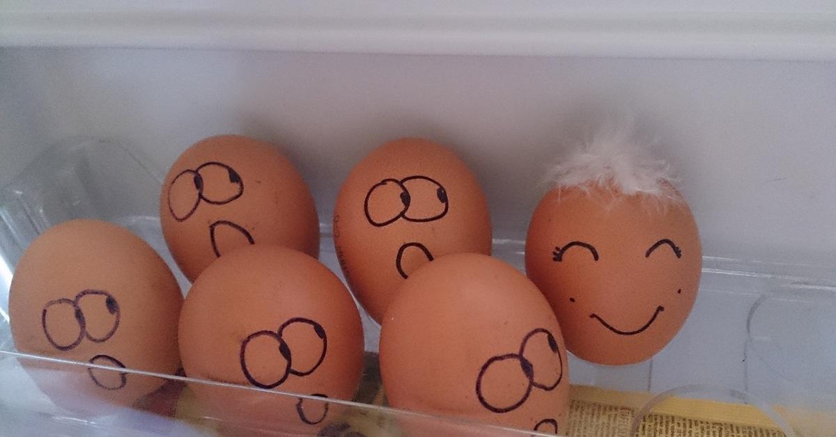 Прикол с яйцами картинки, открытки учителю поздравительные