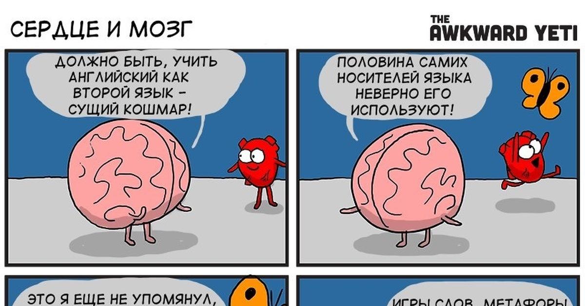Мозг и сердце смешные картинки, красивые открытки для