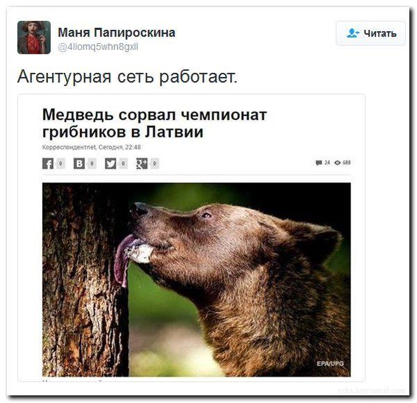Медведи Путина атаковали Латвию Литва, Россия, Медведь, Политика, Юмор, Сарказм