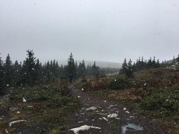 Встретил первый снег в сентябре в горах Природа, Поход, Снег, Иремель, Башкортостан