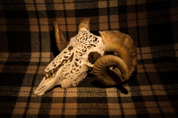 Резной череп барана череп, резба, кости, баран