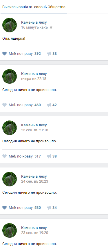 В лесу что-то произошло! алярм, лес, камень в лесу, ВКонтакте