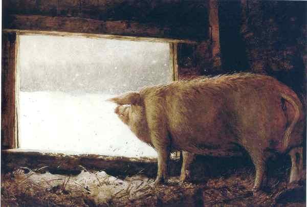 Картина Jamie Wyeth - Winter Pig год 1975