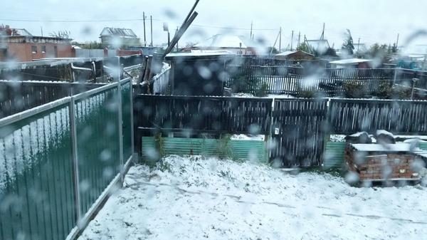 Зима близко. Зима, Сибирь, Омская обл, Мама, Ответ, Заполярье
