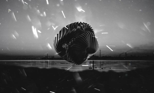 Осень вдохновила... Осень, 3d, Photoshop, KeyShot, Искусство, Странности, НЛО