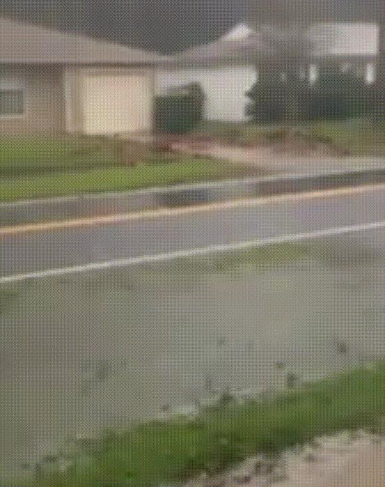 """""""Мой друг из флориды прислал мне это"""" Ураган, Умный парень, Флорида, Гифка"""