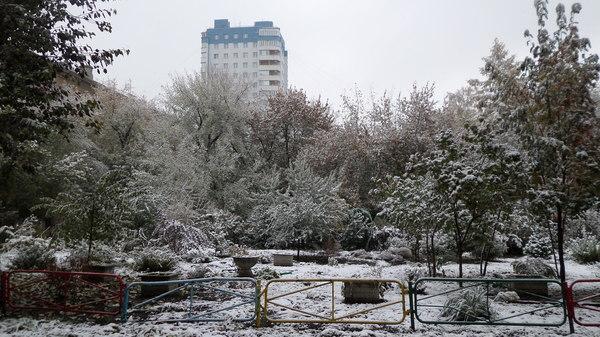 Выпал первый снег, и мой двор выглядит как-то так Снег, Двор, Осень