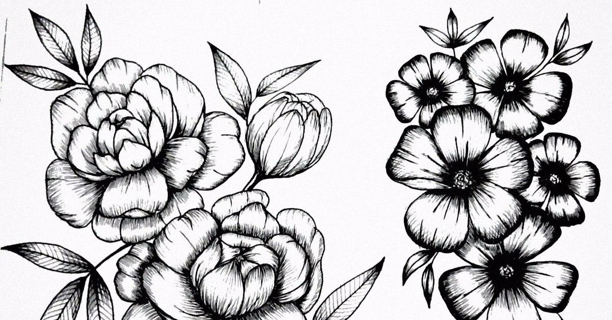 drawings of flowers - HD1600×1125