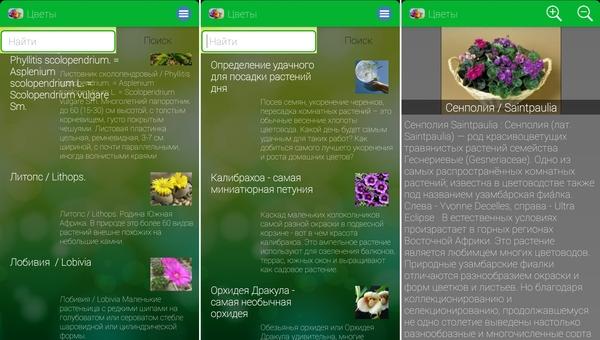 прилодение для определения растений по фото Идея Ремонта салон-магазин