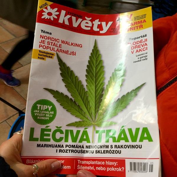 Ну наконец.... чудо-трава, наркотики
