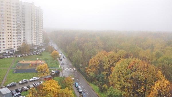 Немного осени Осень, Битцевский парк, Площадь Гагарина, Длиннопост