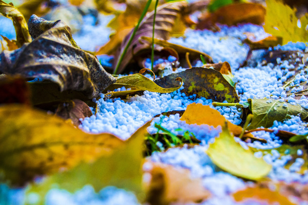 Сказочная осень Photoshop, Меня не обманешь, Осень, Фото, Листья, Снег, Град