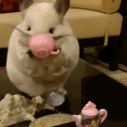 К черту ваш чай!!