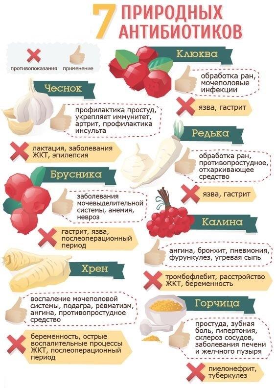 Можно ли лечится диетами
