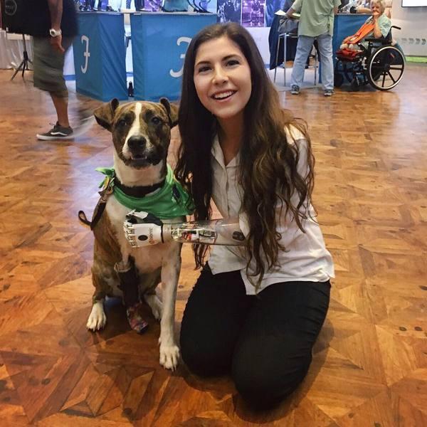 Девушка  с  собакой  на  конференции по  протезированию .