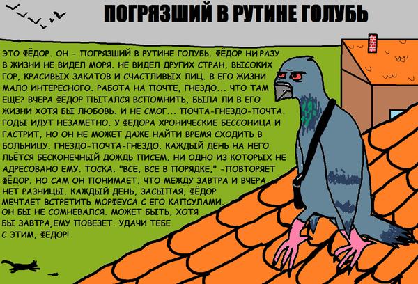 Фёдор Голубиная почта, Голубь, Рутина, Рисунок, Тоска