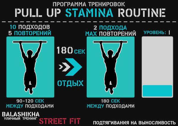 Программы подтягиваний Подтягивания, Workout, Длиннопост, Калистеника,  Упражнения, Программа тренировок, Физкультура 4b8bfdfa97b