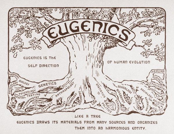 Евгеника — запрещённая наука будущего Евгеника, Прошлое и будущее, Наука ли?, Длиннопост