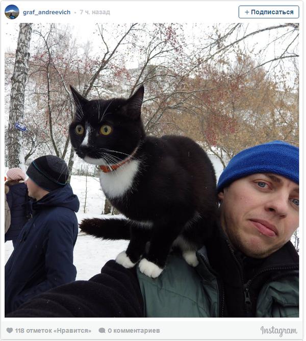 Кот-инстаграмер из Нижнего Тагила спустился в Кунгурские ледяные пещеры Кунгур, Кот, Instagram