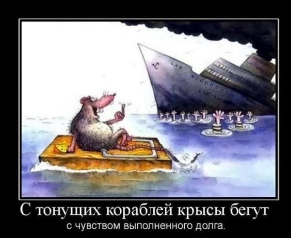 Крысы побежали с тонущего коробля Саакашвили, Украина, Политика, Отставка