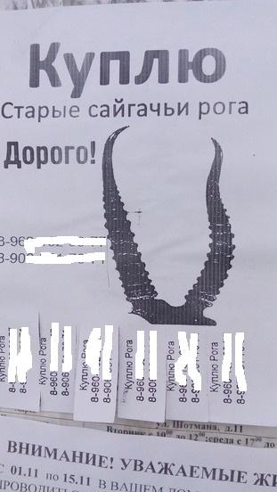 Объявление типичное Объявление, Санкт-Петербург, Конечно, Пожалуйста