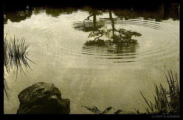 «Старый пруд» (Идеальное произведение японской поэзии) Хокку, Хайку, Басё, Лягушки, Поэзия, Литература, Не мое