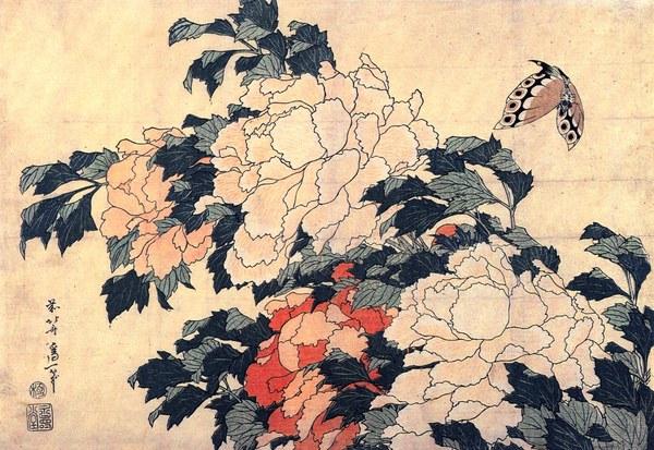 Белая бабочка. Японская трогательная легенда Япония, Мифы, Легенда, Истории, Бабочка, Невеста, Длиннопост