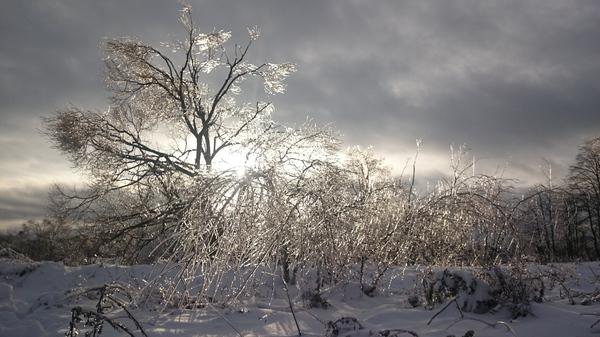 В тему ледяного дождя