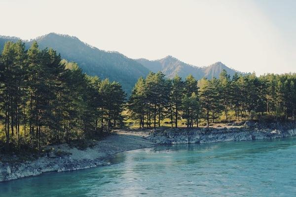 Горный Алтай этой осенью Фото, Горный Алтай, Природа, Canon, Моё, Река Катунь, Длиннопост