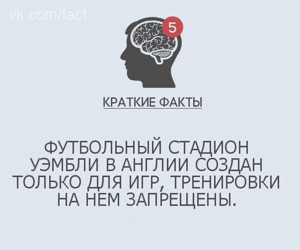 Зенит арена Зенит, Строительство, Деньги, Шутка