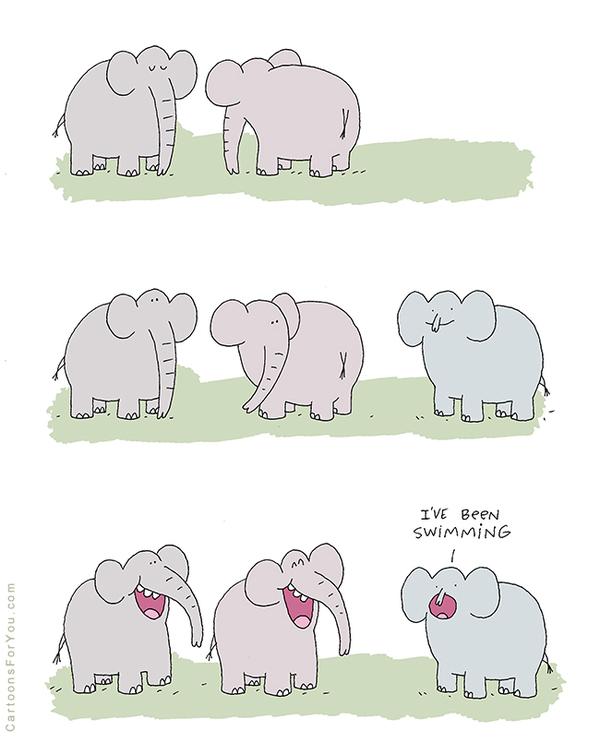 Из жизни слонов Слоны, Холодная вода, Хобот