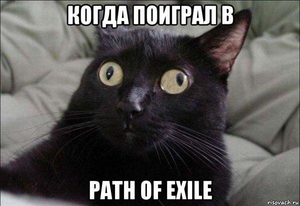 Моё лицо Poe, Path of Exile, Компьютерные игры, Rpg, Кот