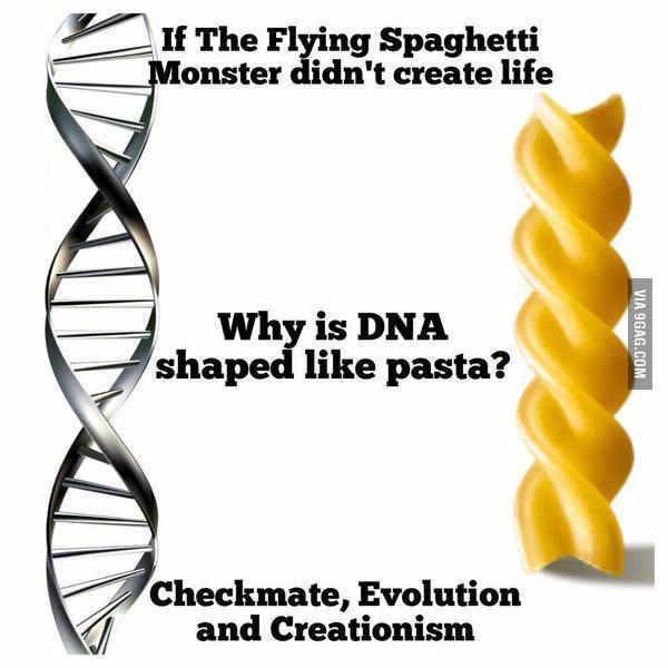 Шах и мат еб*чая эволюция 9gag, Креационизм, Эволюция