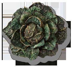 Необычные украшения Hemmerle украшения, Искусство, овощи, длиннопост