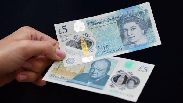 Вегетарианцы против 5-ти фунтовой купюры. Купюра, Бона, 5 фунтов, Великобритания, Вегетарианство