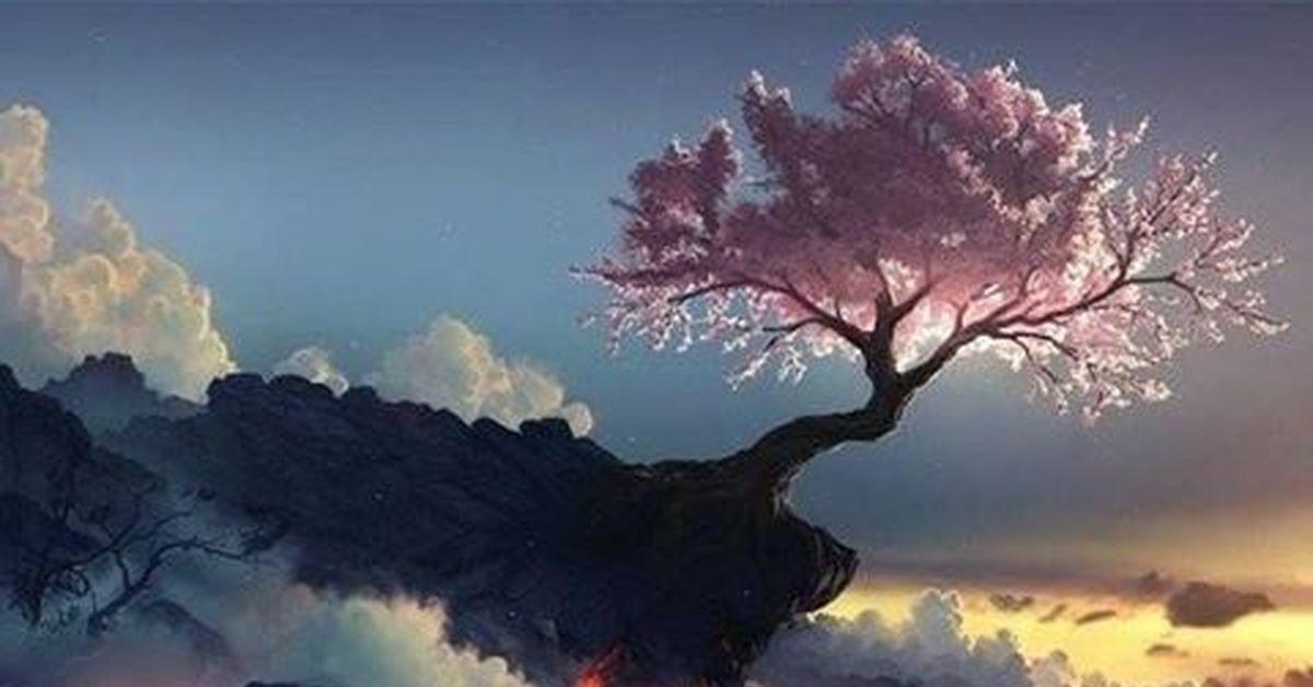 Марта картинки, открытки сакура на ветру