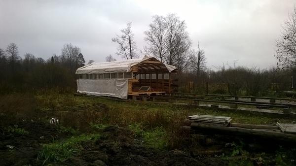 Изыскания в фермерском строительстве, part_1 Стройка, Кролик, Ферма, Длиннопост