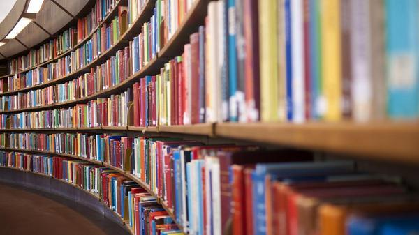 Низкокачественное разнообразие Книги, Интерактив, Текст, Обзор книг, Длиннопост